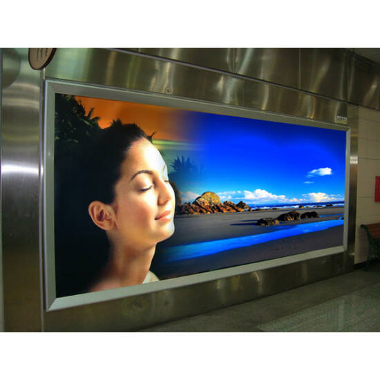 HP Backlit Polyester Film matt